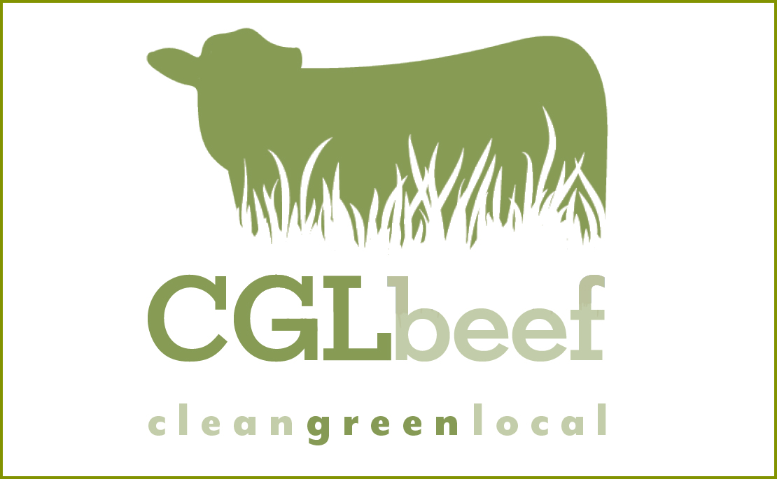 Buy beef direct from farmer