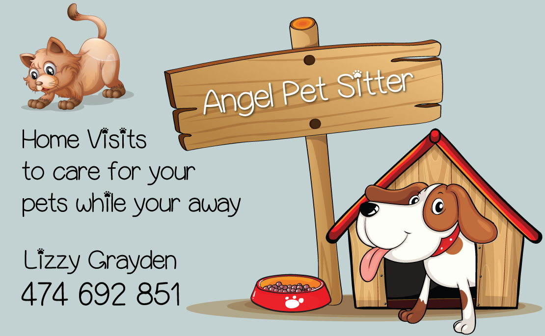 pet minding in your home gympie