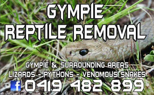 Snake Removal Service Gympie