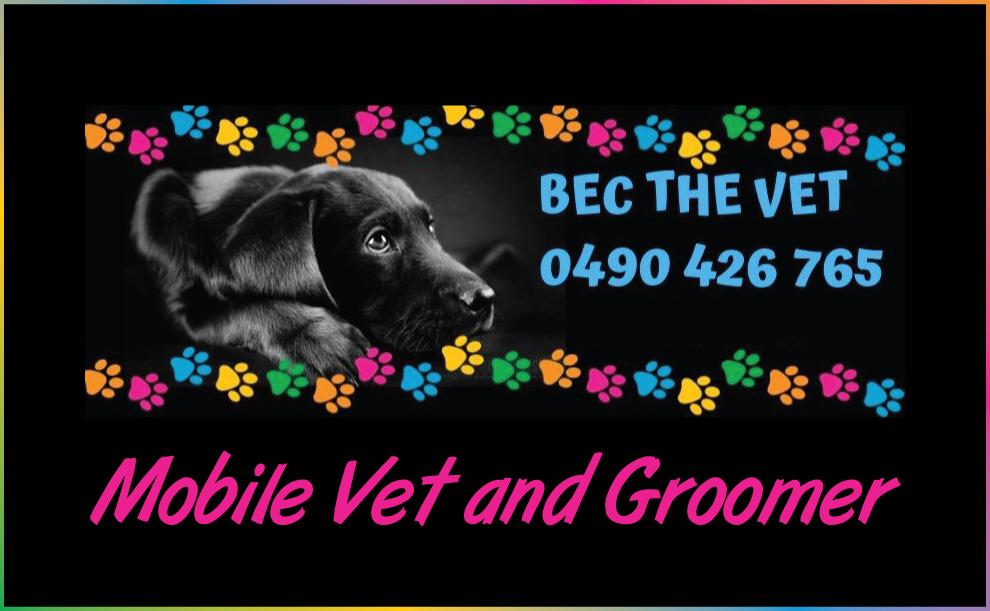 mobile vet services gympie